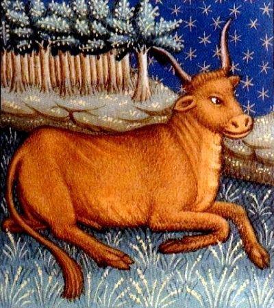 Taurus - Medieval