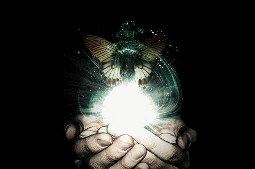 transformation-hands